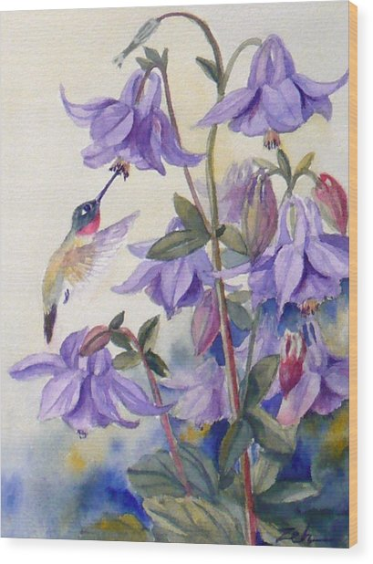 Hummingbird And Purple Columbine Wood Print