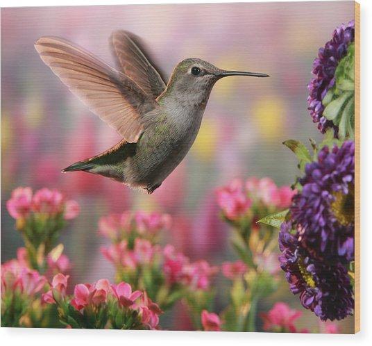 Hummingbird In Colorful Garden Wood Print