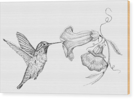 Hummingbird Wood Print by Kyle Peron