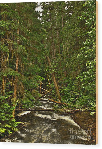Hunt Creek Idaho Wood Print