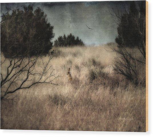 Hunter And The Hunted Wood Print
