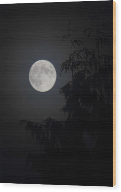 Hunters Moon Wood Print
