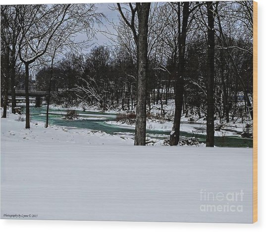 Huron River In Monroeville Wood Print