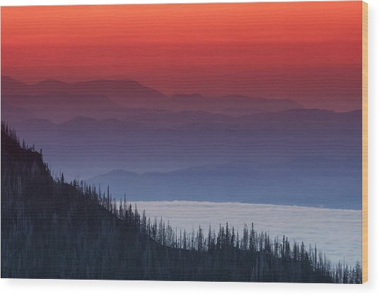 Hurricane Ridge Sunset Wood Print