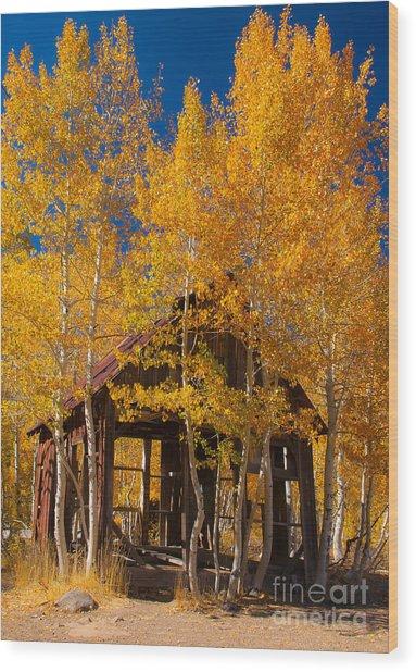 Hushed Home Wood Print