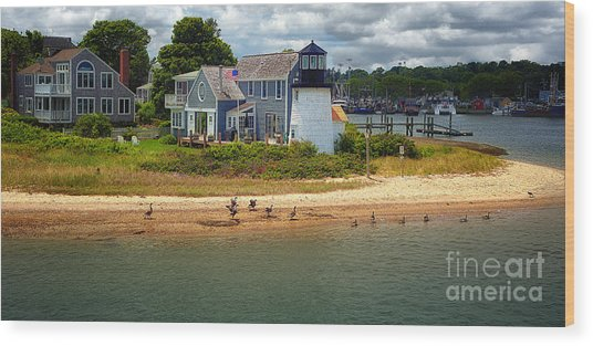 Hyannis Light Migrating Geese Wood Print