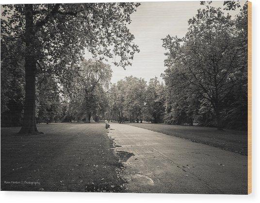 Hyde Park - For Eugene Atget Wood Print