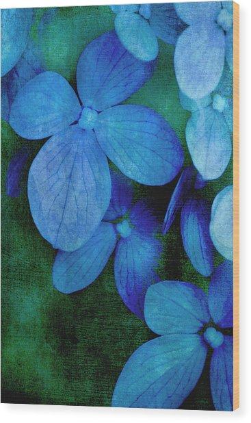Hydrangea Blues Wood Print by Christine Annas