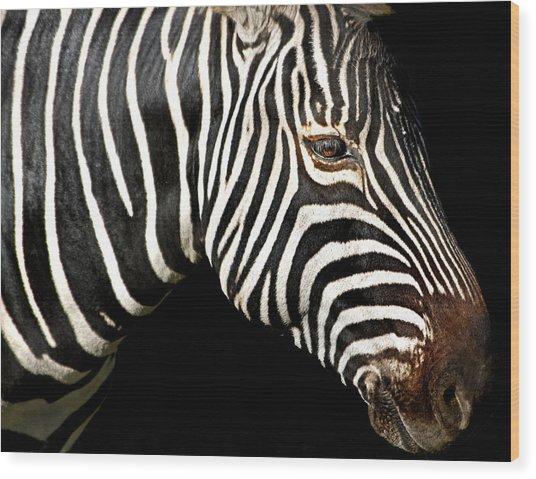 I Am A Zebra Wood Print