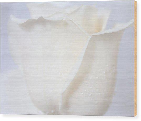 I Believe In Heaven Wood Print by The Art Of Marilyn Ridoutt-Greene