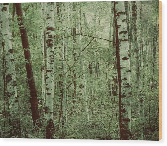 Dreams Of A Forest Wood Print