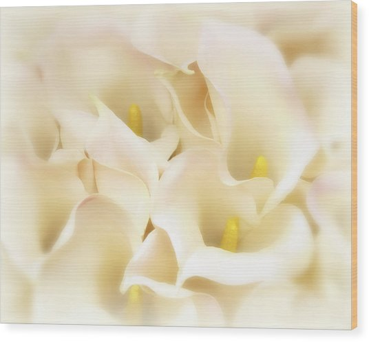 Wood Print featuring the photograph I Dreamed Of Calla Lilies by Gigi Ebert