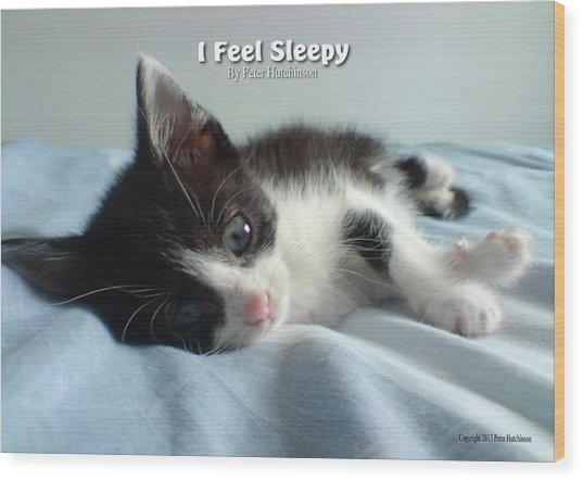 I Feel Sleepy Wood Print