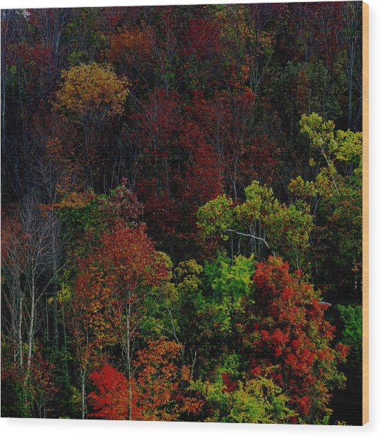 I Love October Wood Print