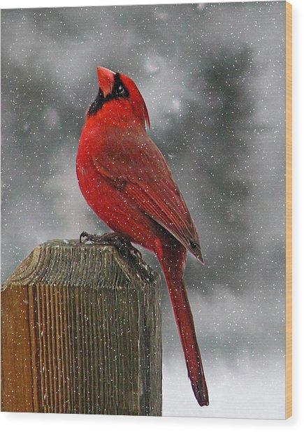 I Love Snow..... Wood Print