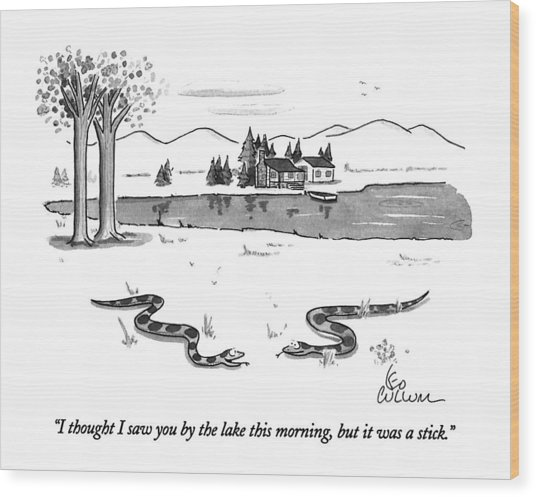 I Thought I Saw You By The Lake This Morning Wood Print