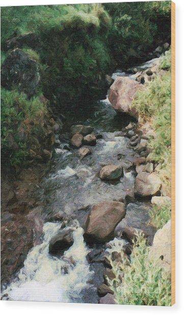 Rocky Stream In Iao Valley Wood Print