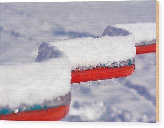 Ice And Snow-5621 Wood Print