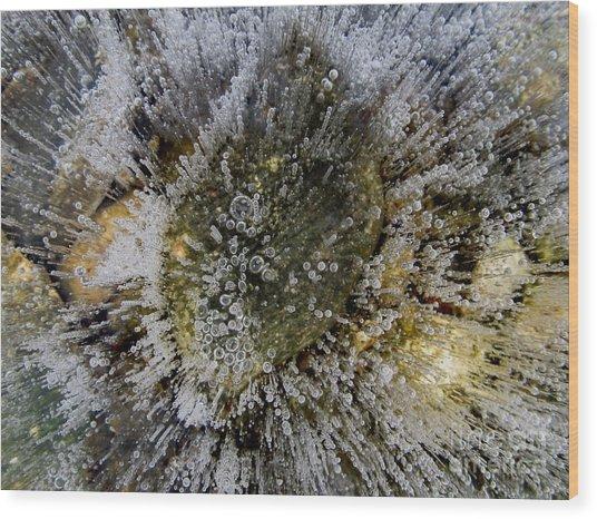 Ice Bubbles Wood Print