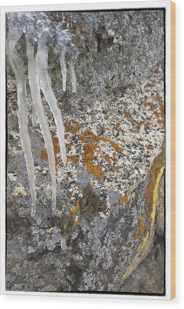 Ice Fall Wood Print