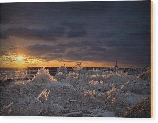 Ice Fields Wood Print