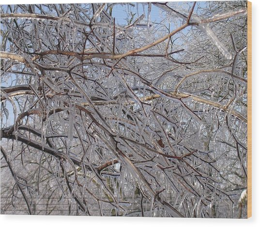 Ice In December Wood Print by Dusty Reed