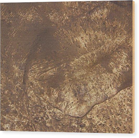 Ice Leaf Wood Print