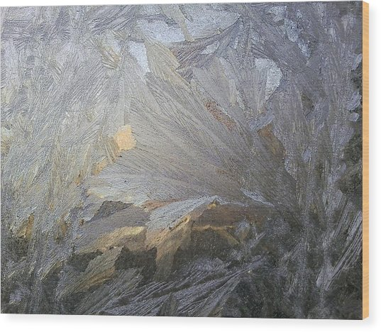 Ice Lily Wood Print by Jaime Neo