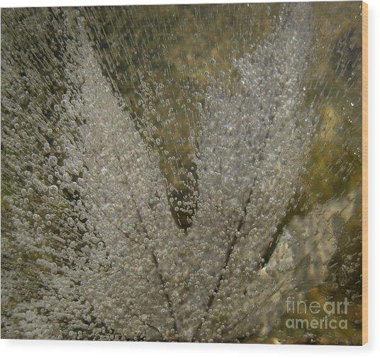 Ice Maple Wood Print