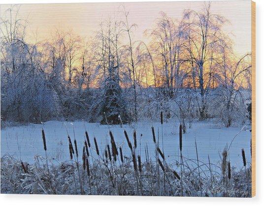 Ice Storm 2013/2 Wood Print