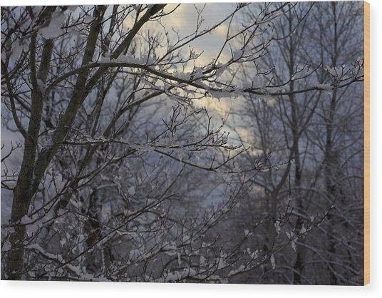 Winter's Embrace Wood Print