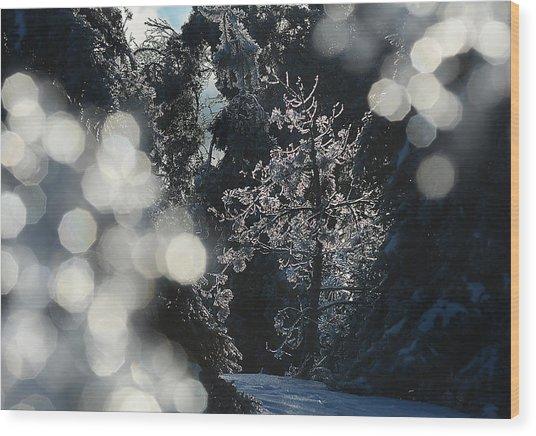 Ice Tree-5074 Wood Print