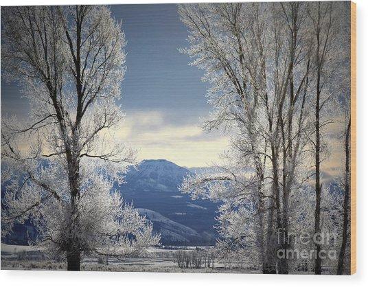 Ice Trees Wood Print