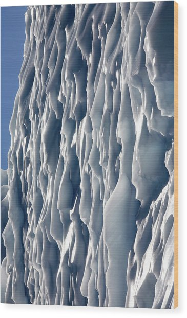 Ice Wall Wood Print by Steve Allen/science Photo Library