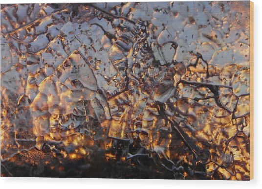 Ice Web Wood Print