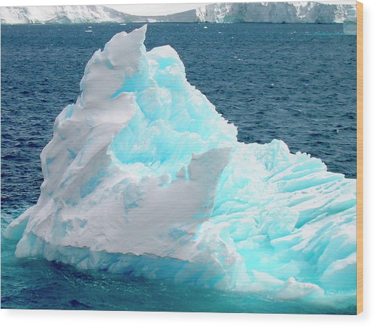 Icebergs Floating In The Sea, Paradise Wood Print