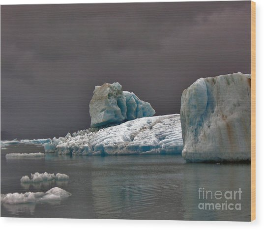 Icebergs Of Leconte Glacier Wood Print