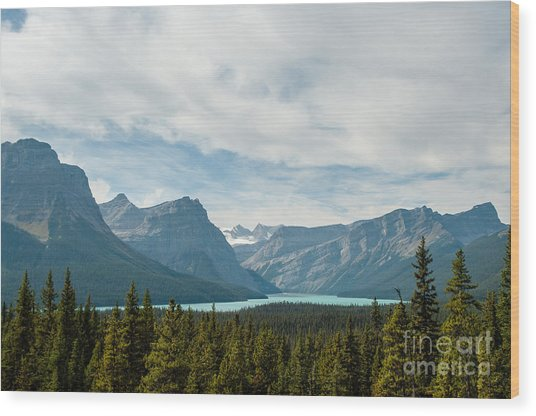 Icefields Parkway 2.0580 Wood Print by Stephen Parker