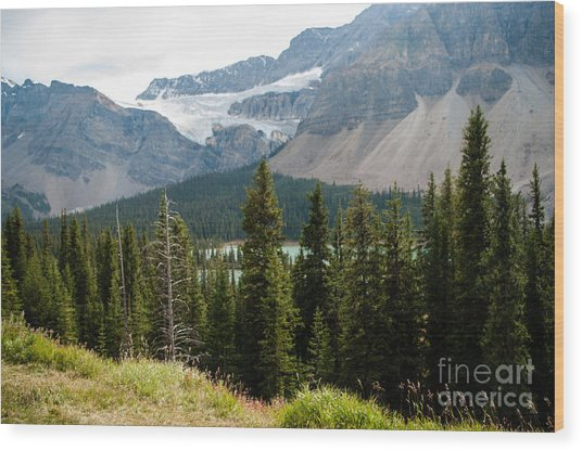 Icefields Parkway 2.0590 Wood Print by Stephen Parker