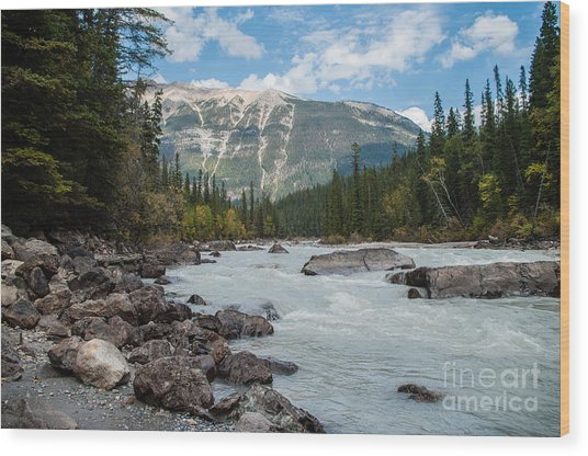 Icefields Parkway 2.0640 Wood Print by Stephen Parker
