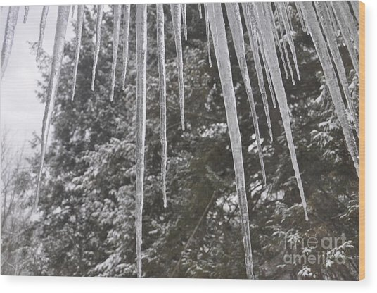 Icicle Dreams Wood Print