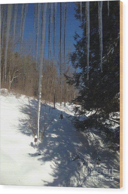 Icy Fingers Wood Print