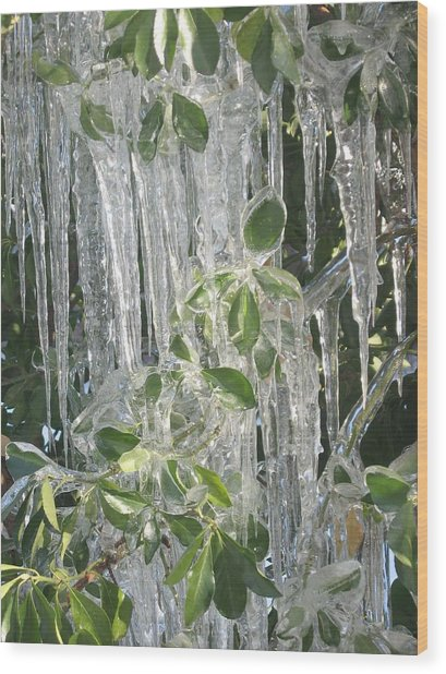 Icy Green Wood Print
