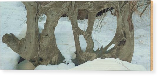 Idyllwild Tree Sculpture Wood Print