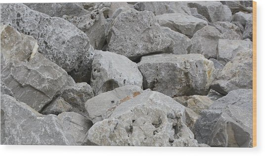 If Rocks Could Talk Wood Print by Terry Scrivner