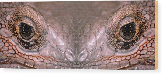 Iguana Eyes Wood Print