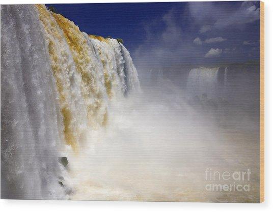 Iguazu Falls I Wood Print