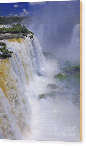Iguazu Falls IIi Wood Print