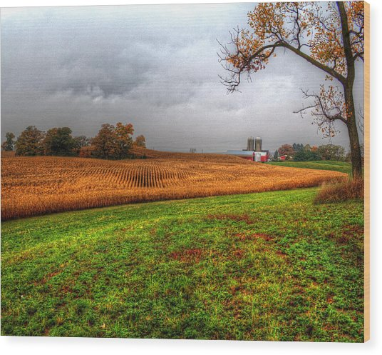 Illinois Farmland I Wood Print
