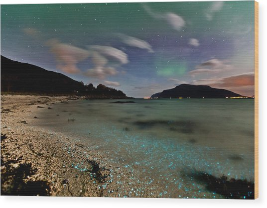 Illuminated Beach Wood Print